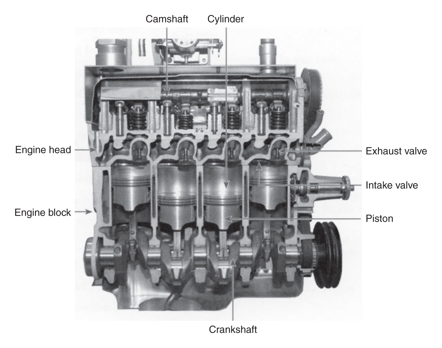 cutaway diagram of a four cylinder gasoline engine biology forums gallery