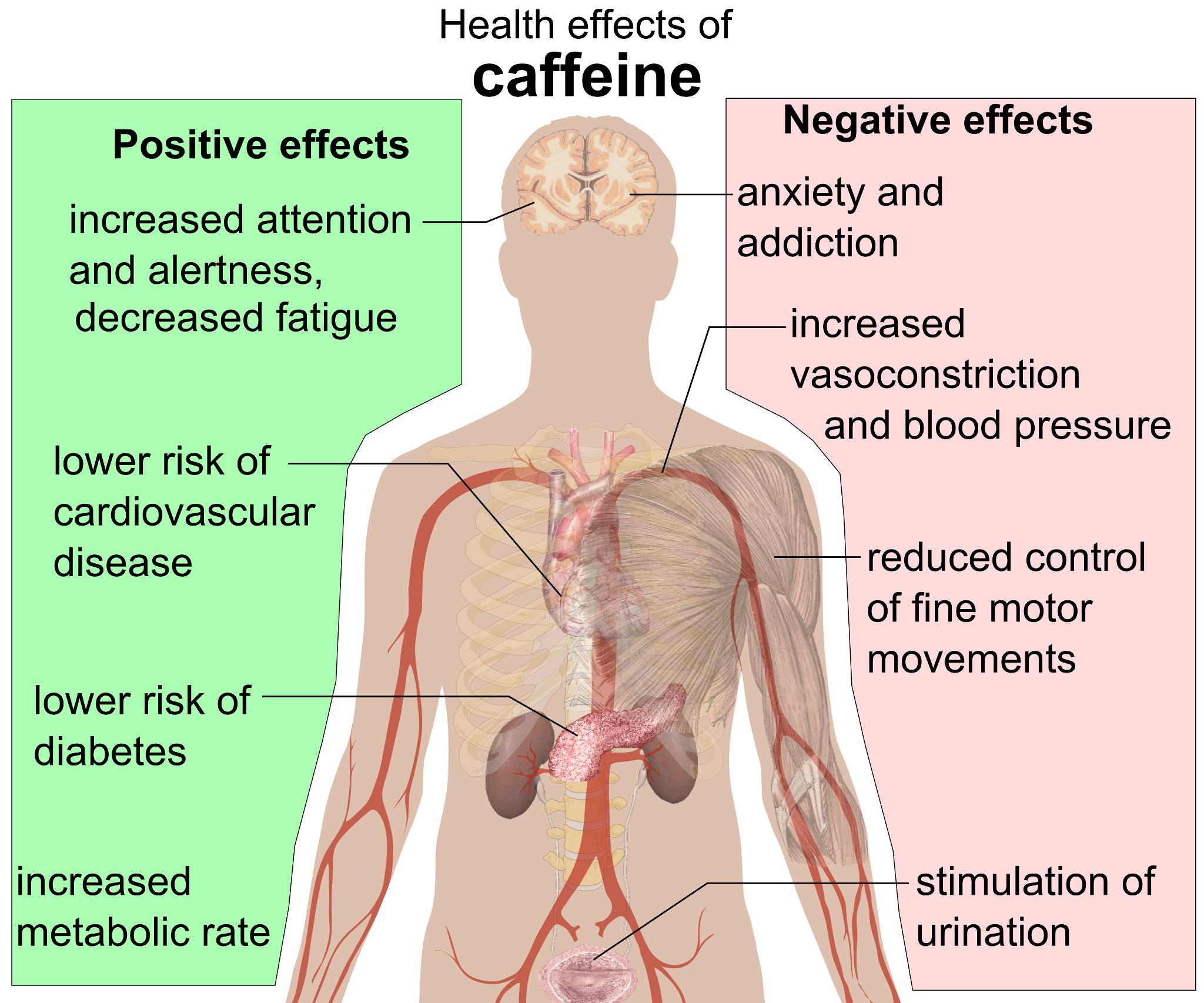 caffeine and its effects More frequently reported side effects include: necrotizing enterocolitis see below for a comprehensive list of adverse effects along with its needed effects, caffeine may cause some unwanted effects although not all of these side effects may occur, if they do occur they may need medical attention.