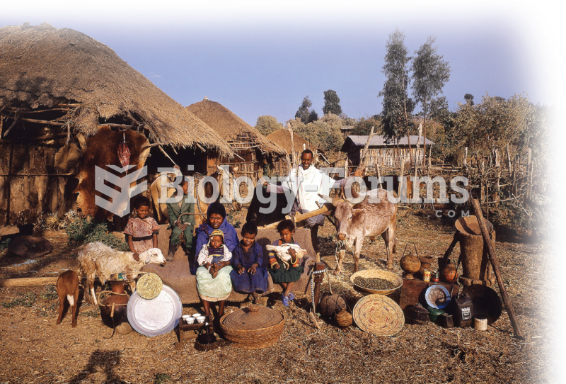 The Mulleta family of Ethiopia, described in the opening vignette.