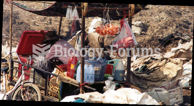 Working and Living and Playing in the  City Dump of Phnom Penh, Cambodia