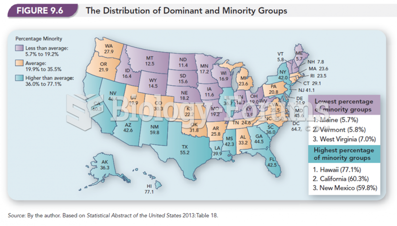 The Distribution of Dominant and Minority Groups