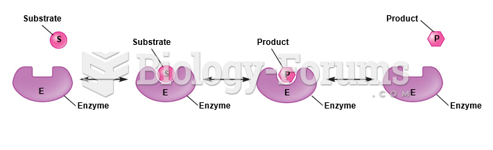 Induced-fit model of enzyme activity.