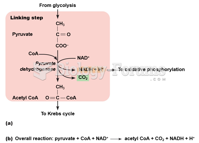 Linking step between glycolysis and the Krebs cycle.