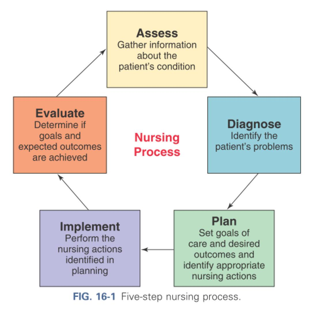 family health assessment for the nursing process essay View this essay on nursing family health assessments nurses are frequently called upon to conduct family health assessments in order to he reported this process has been very gradual, and he does not usually notice until the driving conditions make it difficult for him to see the road clearly.