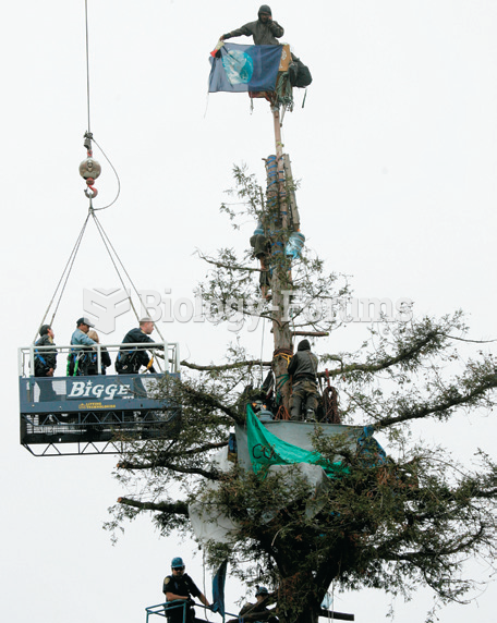 These tree-sitters are being forcibly removed. They were protesting the environmental damage that ...