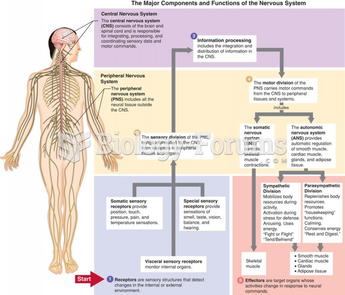 Major components and functions of the nervous system.