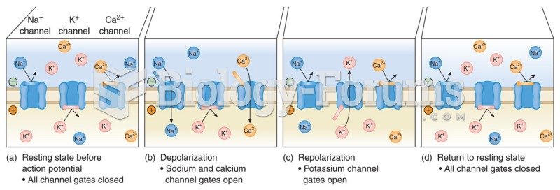 The flow of ions through ion channels in myocardial cells.