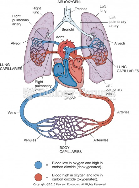 lab 9 renal system physiology For 6000 - system physiology i: cardiovascular, respiratory and renal  systems  class schedule: wf 9:10-10:30 lab f 1:00-4:00 and, if large class  size, m: 1:00-4:00  of systemic cardiovascular physiology in human and animal  systems.