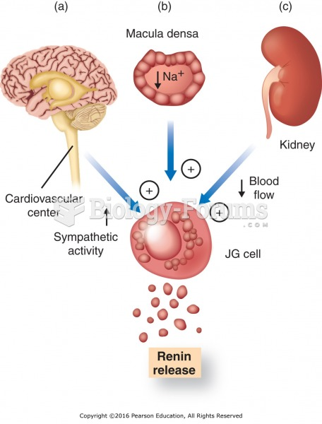 Overview of factors affecting renin release: (a) activation of the sympathetic nervous system; (b) ...