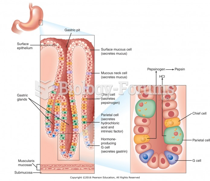 The stomach lining: gastric glands and the secretion of hydrochloric acid.