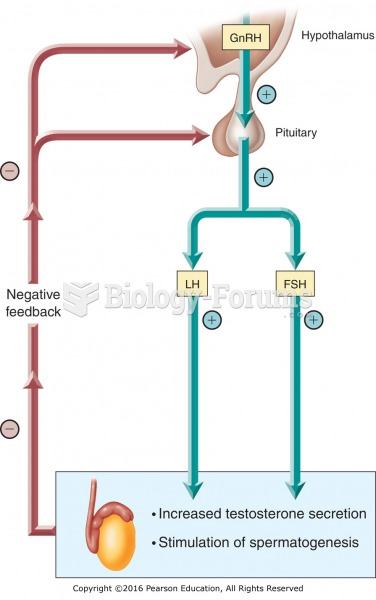 Hormonal control of the male reproductive hormones.