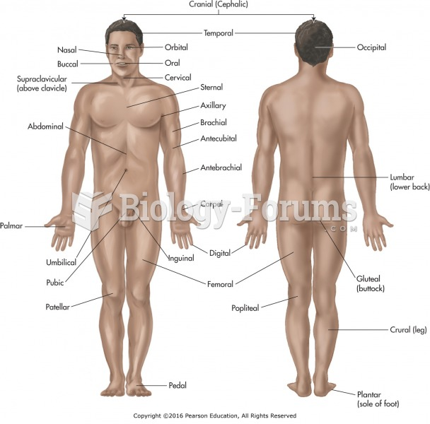 Anterior and posterior body regions.
