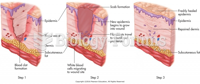 The steps of wound repair.