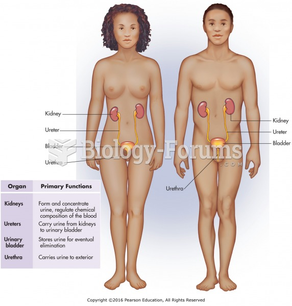 The female and male urinary systems.