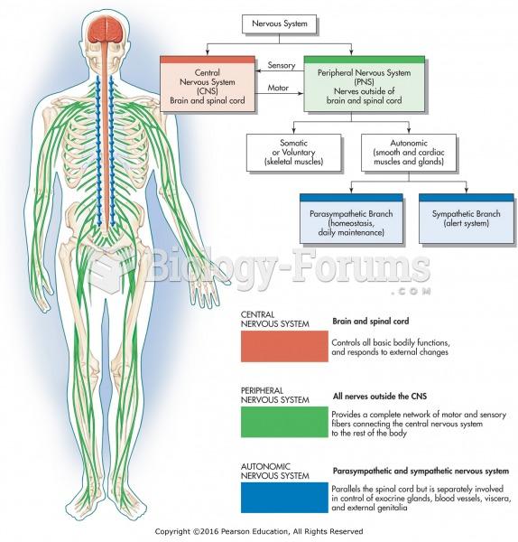 Organization of the nervous system.