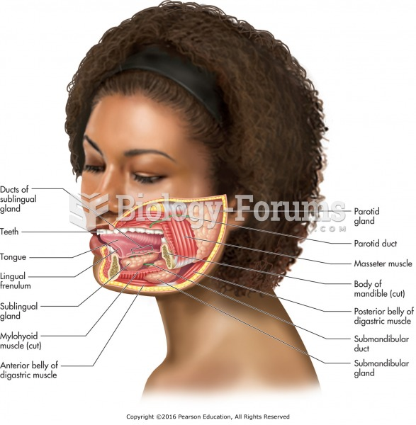 The salivary glands and related structures of the oral cavity.