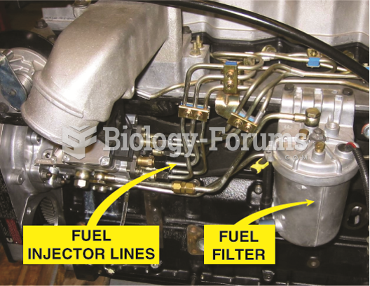 A typical distributor-type diesel injection pump showing the pump, lines, and fuel filter.