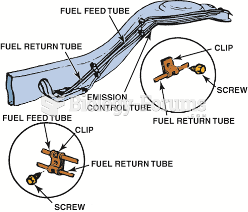 Fuel lines are routed along the  frame or body and secured with clips.