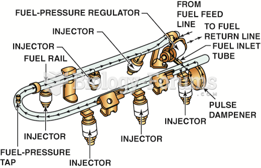 The injectors receive fuel and are supported by the fuel rail.