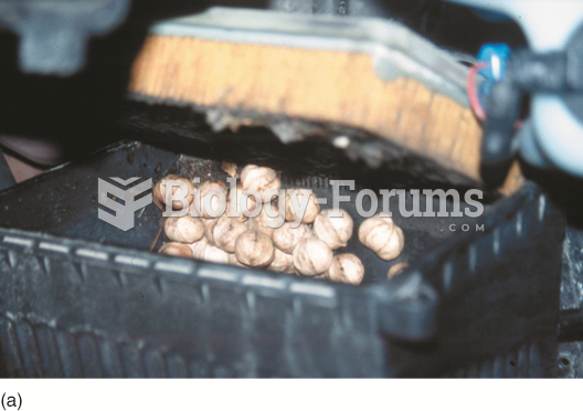 Note the discovery as the air filter housing was opened during service on a Pontiac Bonneville. The ...