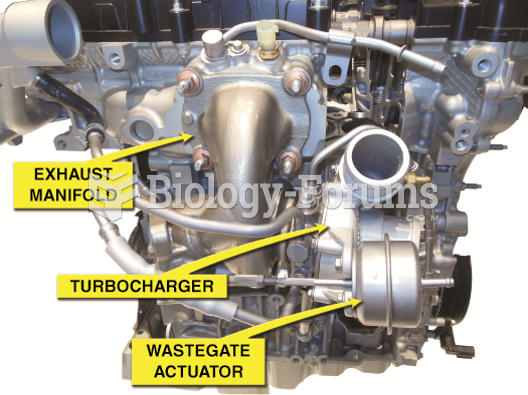 A turbocharged Ford three-cylinder  1.0 liter Eco Boost engine.