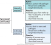 Types of immunities.