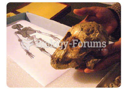 The remarkably complete skull of a 3-year-old  Australopithecus girl; the fossil is 3.3 million ...
