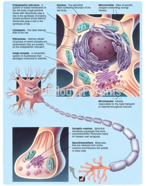 The major internal features of a neuron.