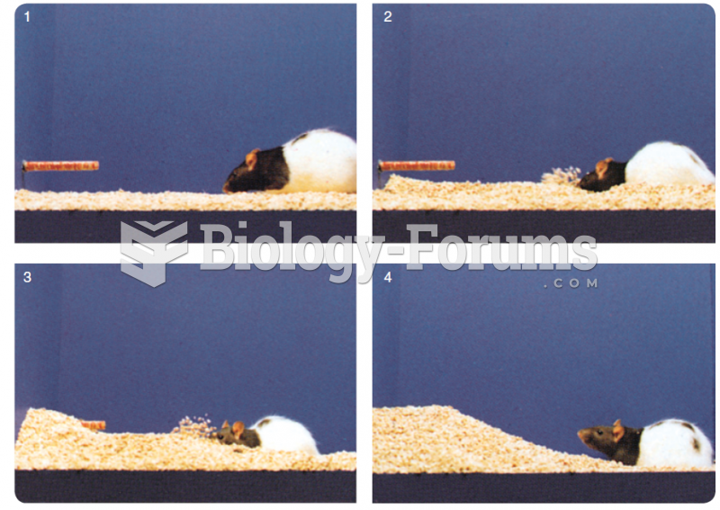 These photos show a rat burying a test object from which it has just received a single mild shock.