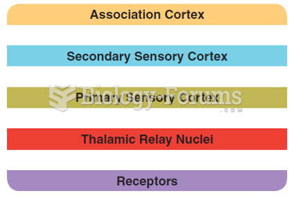 The hierarchical organization of the sensory systems. The receptors perform the simplest and most ...