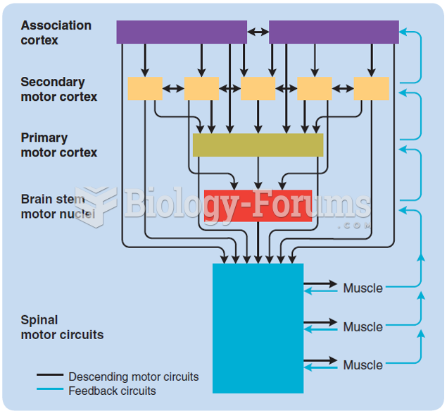 A general model of the sensorimotor system. Notice its hierarchical structure, functional ...