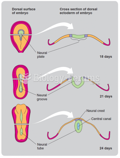 How the neural plate develops into the neural tube during the third and fourth weeks of human ...
