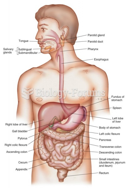 The gastrointestinal system.