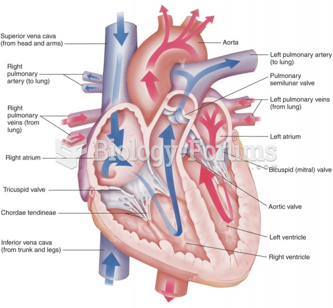 Blood flow through the heart.