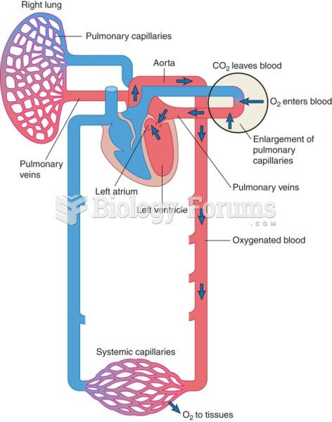 Return of oxygenated blood to the heart and entry into the aorta (red = oxygenated blood, blue = ...