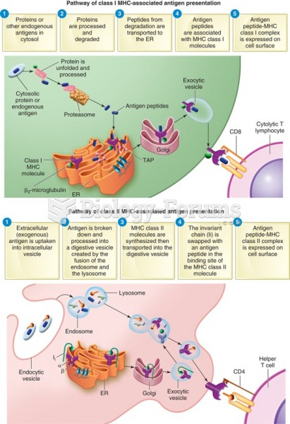 Differences in the antigen-processing pathways between MHC molecules class I and class II.