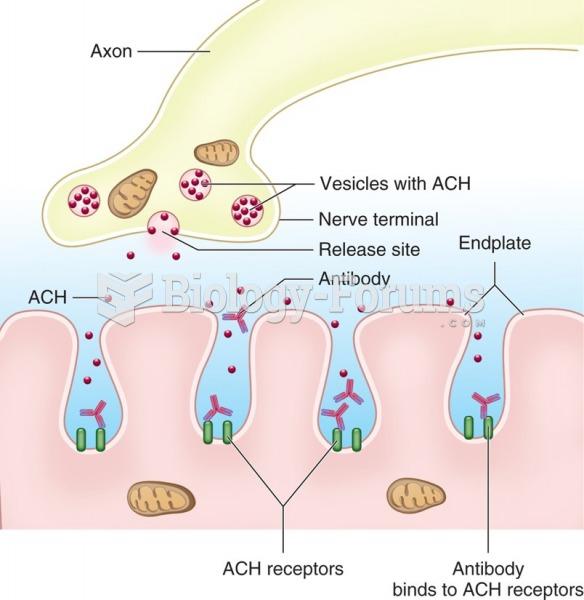 Antibodies in myasthenia gravis block the acetylcholine receptors at the neuromuscular junction