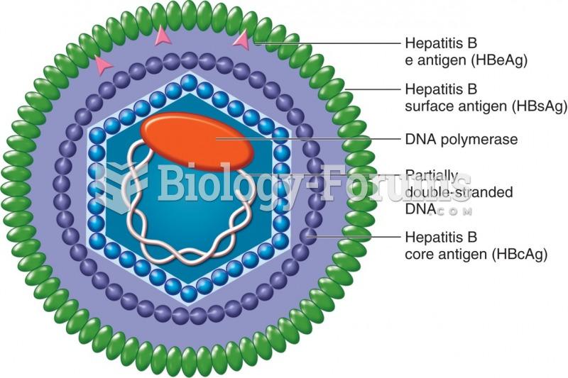 Structure of the hepatitis B virus.