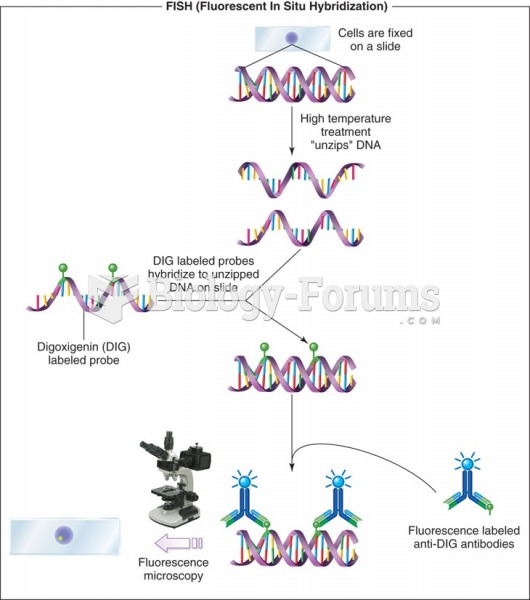 Scheme of the principle of the fluorescent in situ hybridization to localize a gene in the nucleus.
