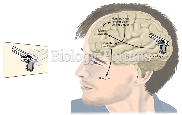Hypothetical Exchanges of Information within the Brain of a Patient with Visual Agnosia