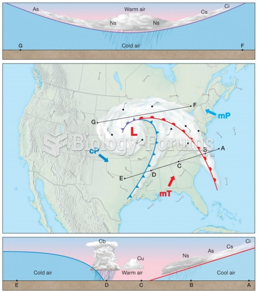Idealized Weather of a Midlatitude Cyclone