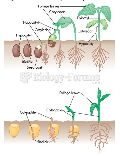 Two common types of seed germination