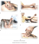 Fascial mobilization techniques. (A) Fascial mobilization on the lower back using the palm. (B) ...