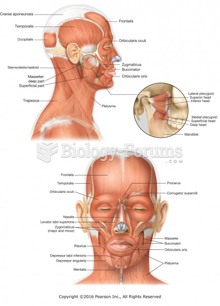 Major muscles of the face and head.