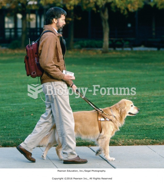Do not interact with a service dog unless you have permission from its owner.