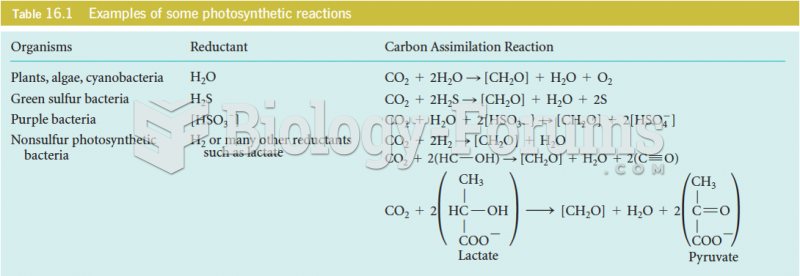 Example of some photosynthetic reactions