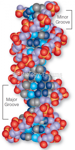 A space-filling model of DNA.