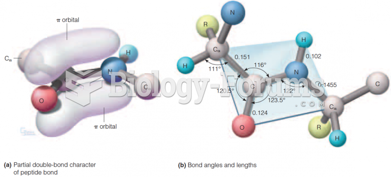 Amide carbonyl and Amide bonds