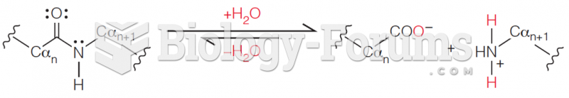 Hydrolysis of peptide bonds