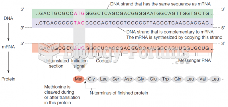 Relationships of DNA to mRNA to polypeptide chain